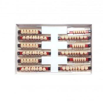 Garnituri de dinti acrilatset complet T1A3
