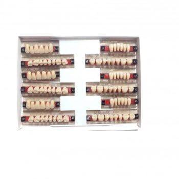 Garnituri de dinti acrilatset complet