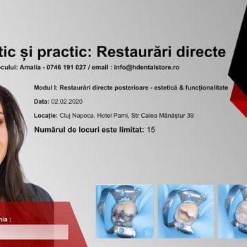 Curs teoretic și practic: Restaurari directe